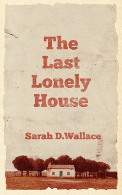 Nº 0140 - The Last Lonely House