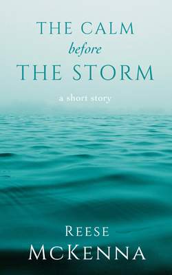 Nº 0249 - The Calm Before The Storm